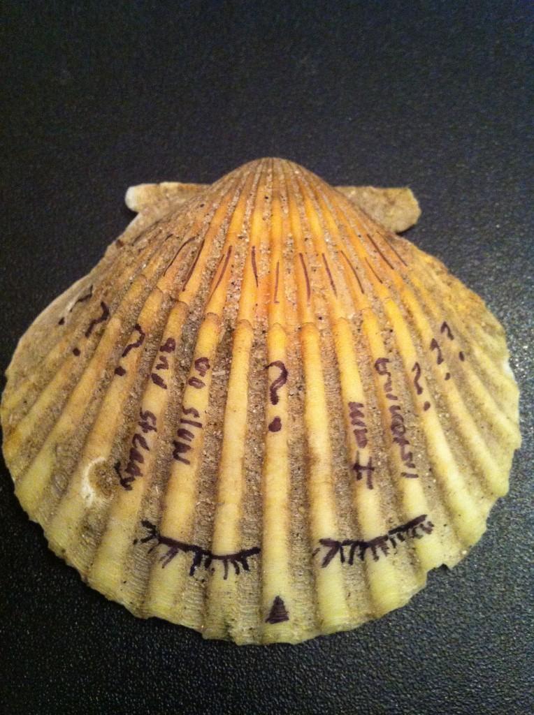 Slow and steady. I am listing. Gypsy Tornado 2012.
